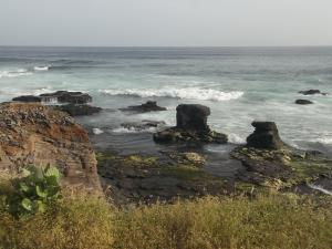 Ocean Pic Oct 2013 - 1