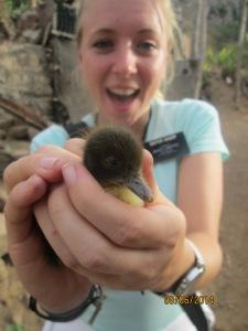 LIndsay Mission June 2014 little duck
